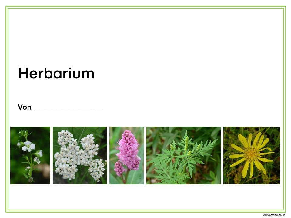 Herbarium Deckblatt Zum Ausdrucken | marlpoint