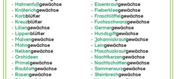 Pflanzen Archive Materialien Grundschule Wikiwisseninklusivde