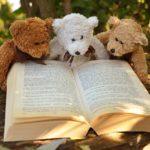 Lesekiste - Buchvorstellung mal anders