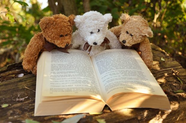 Lesekiste – Buchvorstellung mal anders