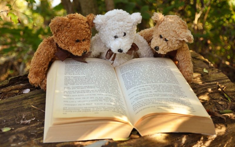 Lesekiste - Buchvorstellung