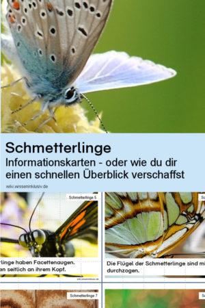 Schmetterlinge Wissenskartei und Informationskarten