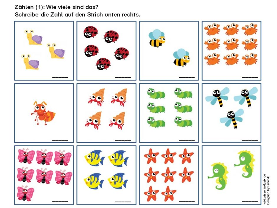Zählen lernen durch Zählen von verschiedenen Tieren, z.B. Marienkäfer, Schnecken, Seepferdchen, Seesterne, Schmetterlinge usw.